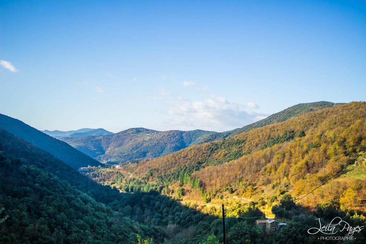 Leila vue montagnes