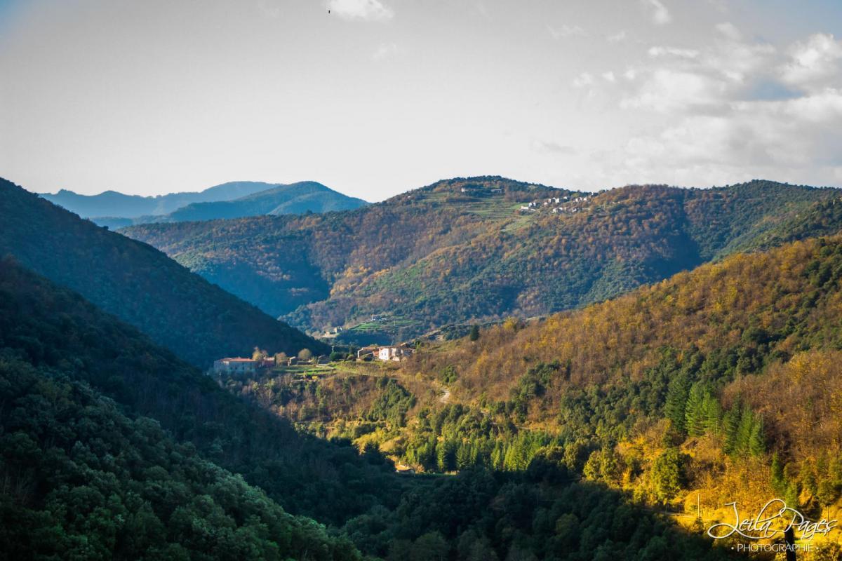 Leila vue montagnes2